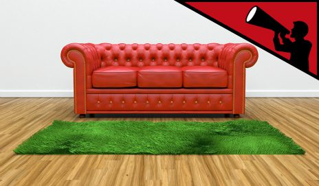 Red leather sofa and a green rug